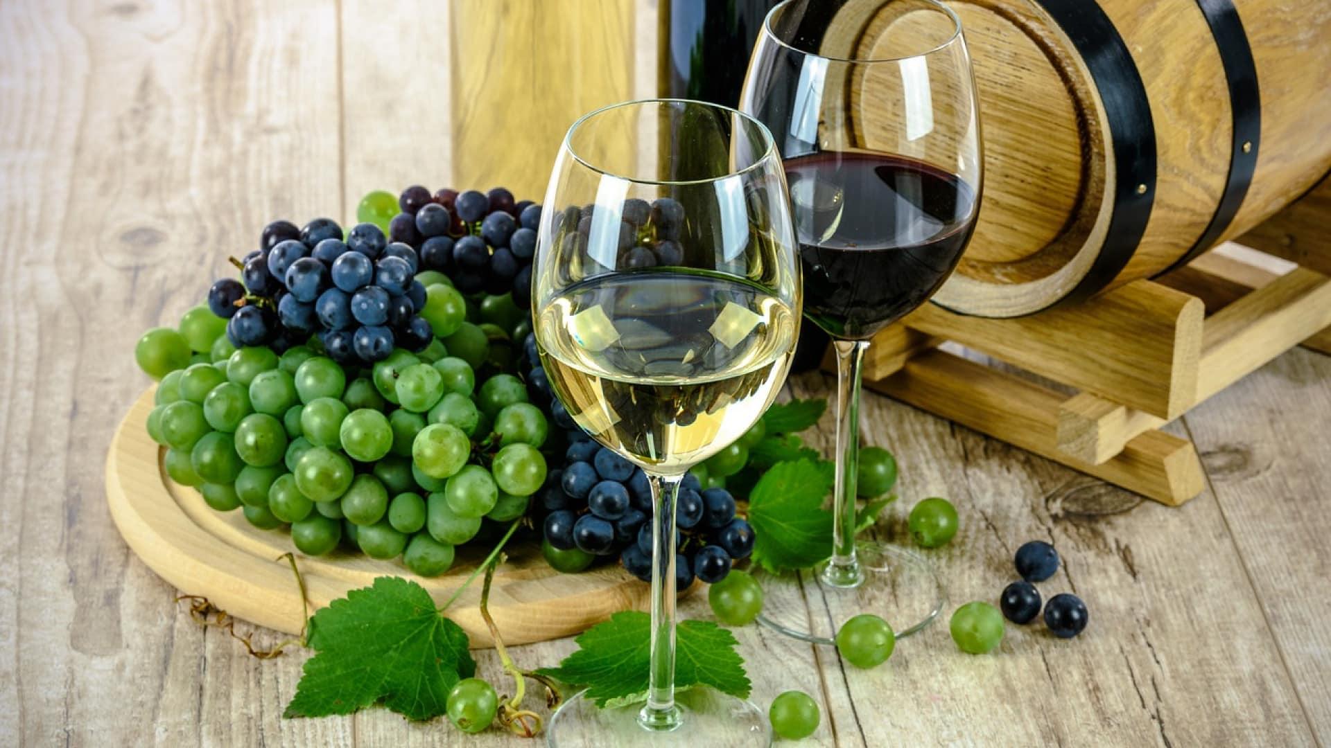 Et si vous optiez pour un vin bio ?